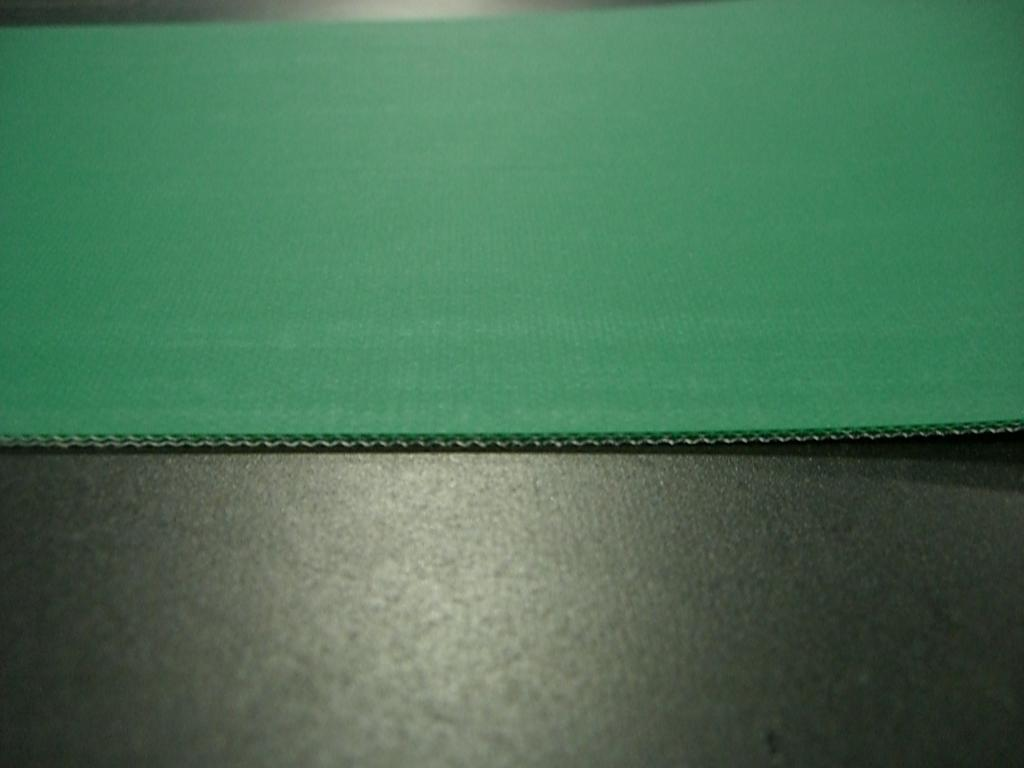 食品用ベルト・薬品用ベルト/洗浄/GEU-12ANF