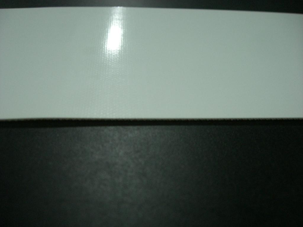 食品用ベルト・薬品用ベルト/超鏡面仕様/MX718
